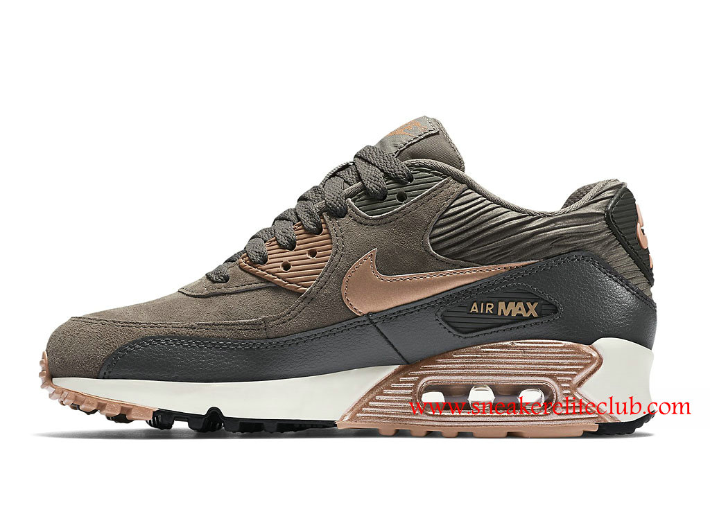 chaussures air max femme